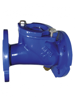 Ball Check Valve With Lifting Device